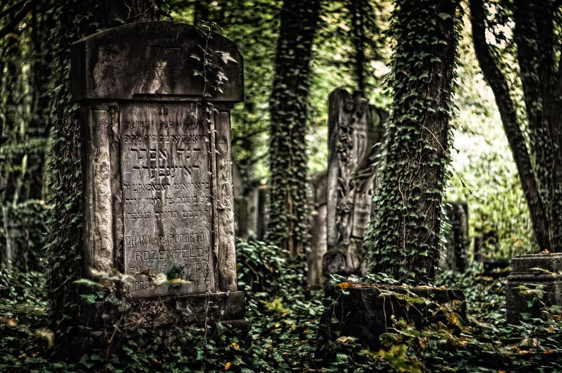 Cmentarz 09