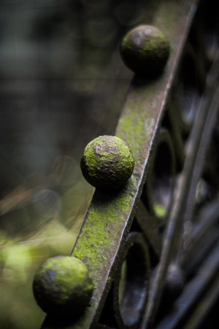 Cmentarz 14