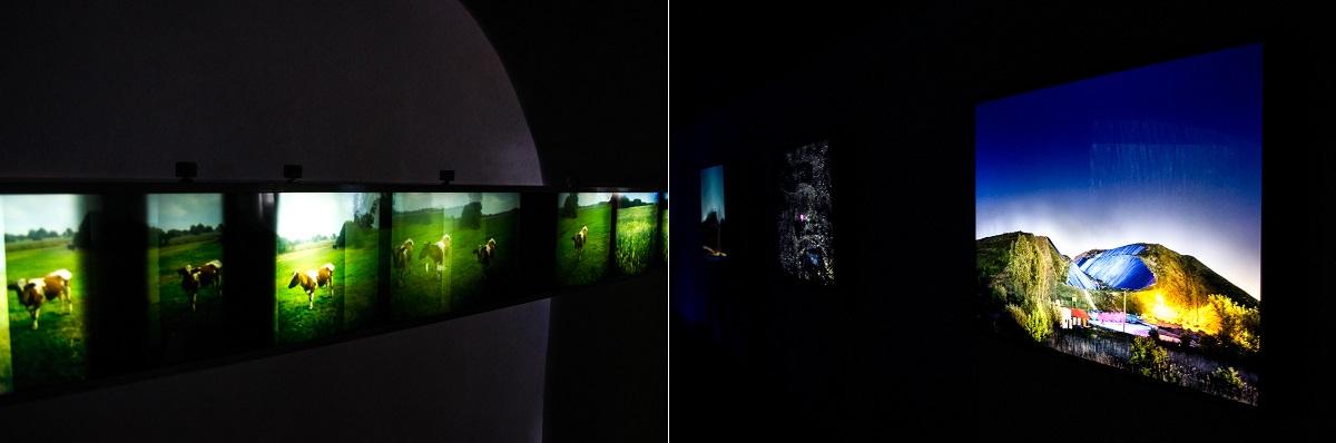 Darkroom 04