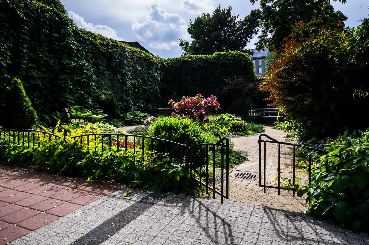 Tajemniczy ogrod 05