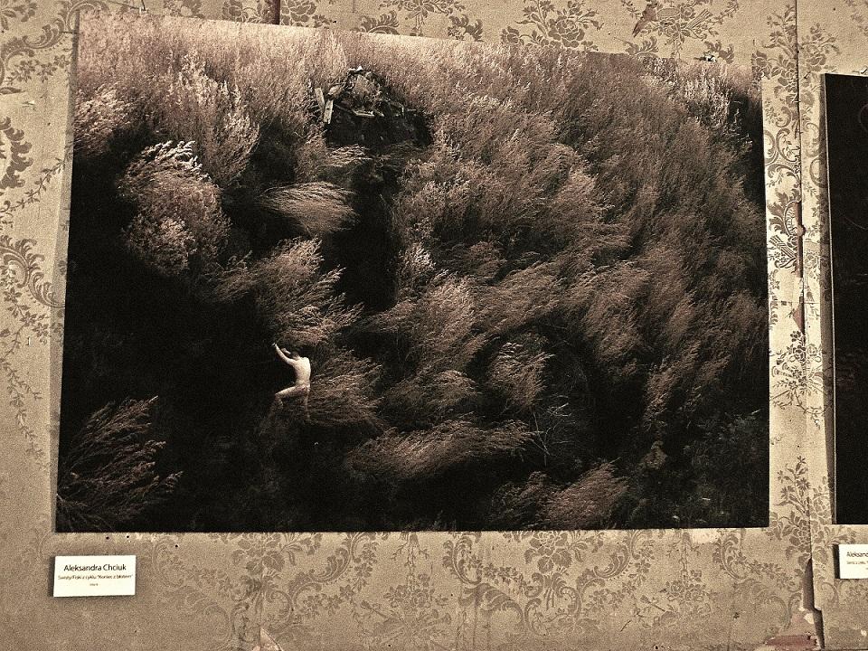 Otwarta wystawa 10