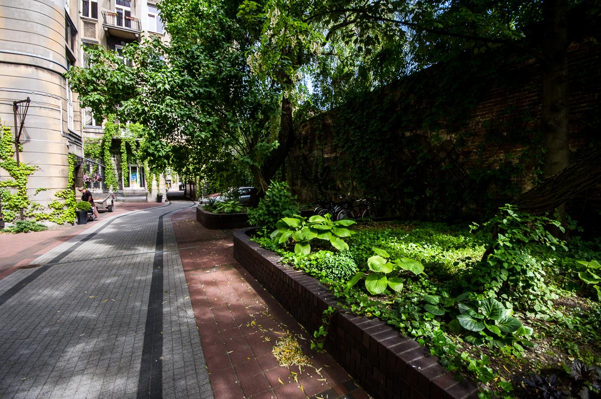 Tajemniczy ogrod 04