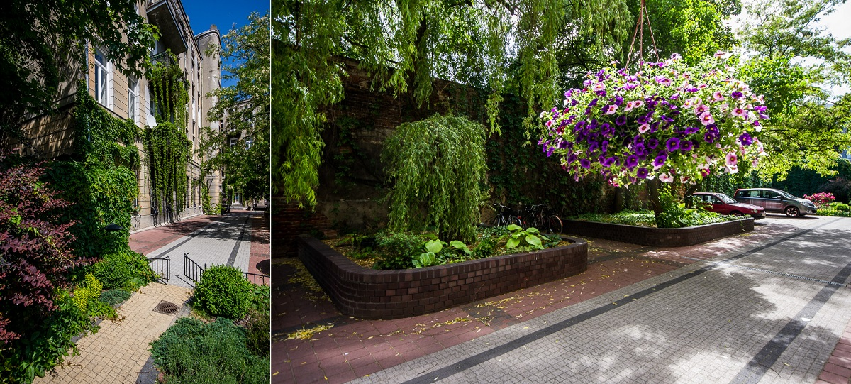 Tajemniczy ogrod 07